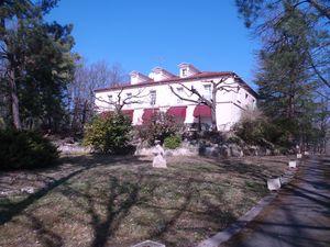 Détails : La Villa Les Pins